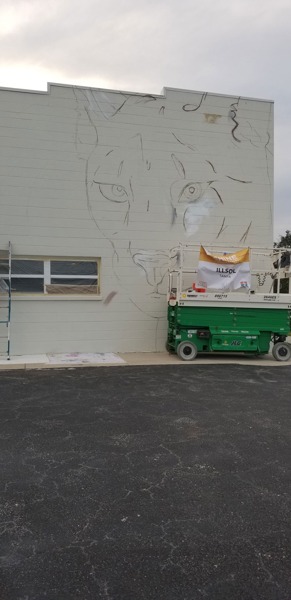 Notice Us - A Mural Dedicated to The Florida Panther image